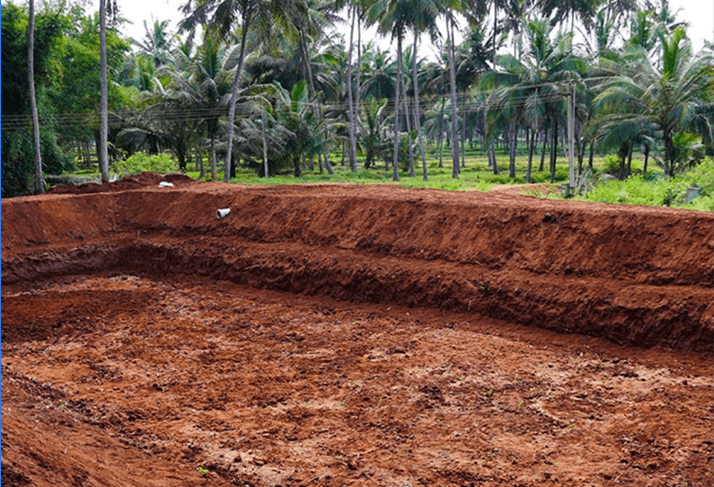 Things to do on a Monthly Basis in Coconut Farms: April to May